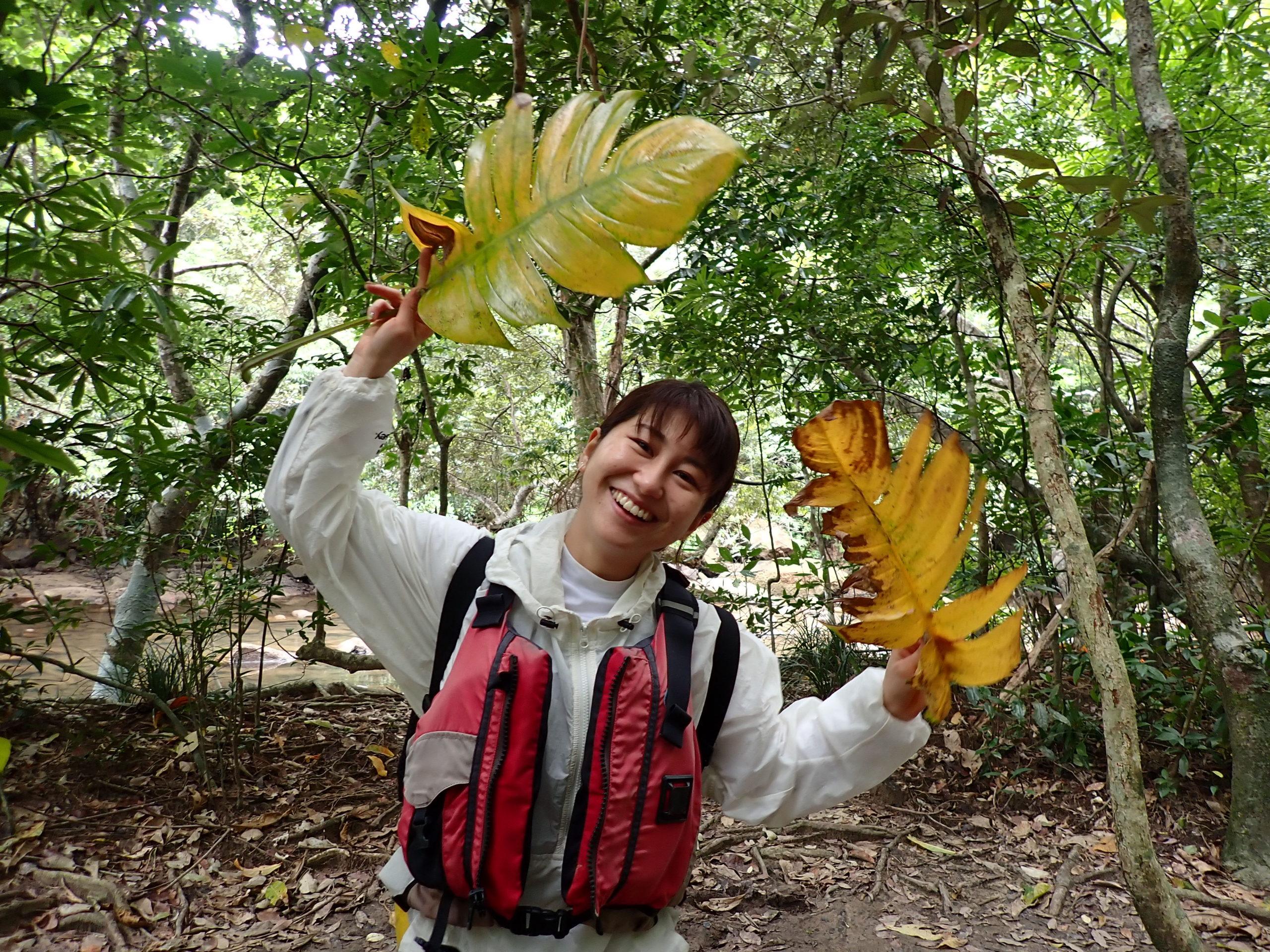 1人旅も大歓迎!西表島で遊ぶならここ!ピナイサーラの滝カヌーツアー